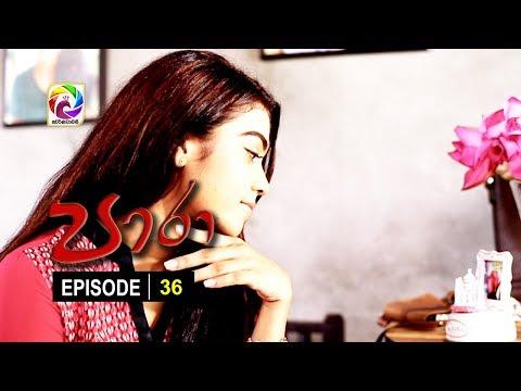 Paara Episode 36  || පාරා    . . . | සතියේ දිනවල රාත්රී 7.30 ට . . .