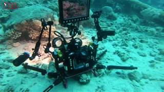 UNDERWATER VIDEO SETUP