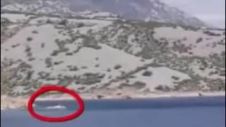 Top 7 Người cá xuất hiện bị bắt gặp trên camera