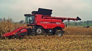 Dwa giganty w kukurydzy! Kombajny Case IH 9240 i 8240 na polach CGFP