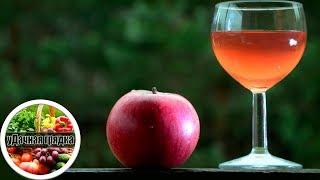 Обалденное домашнее вино из яблок, рецепт – проще не бывает!!!