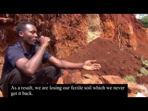 Artisanal Small Scale Gold Mining in Oddo Shakiso Woreda of Oromia Region