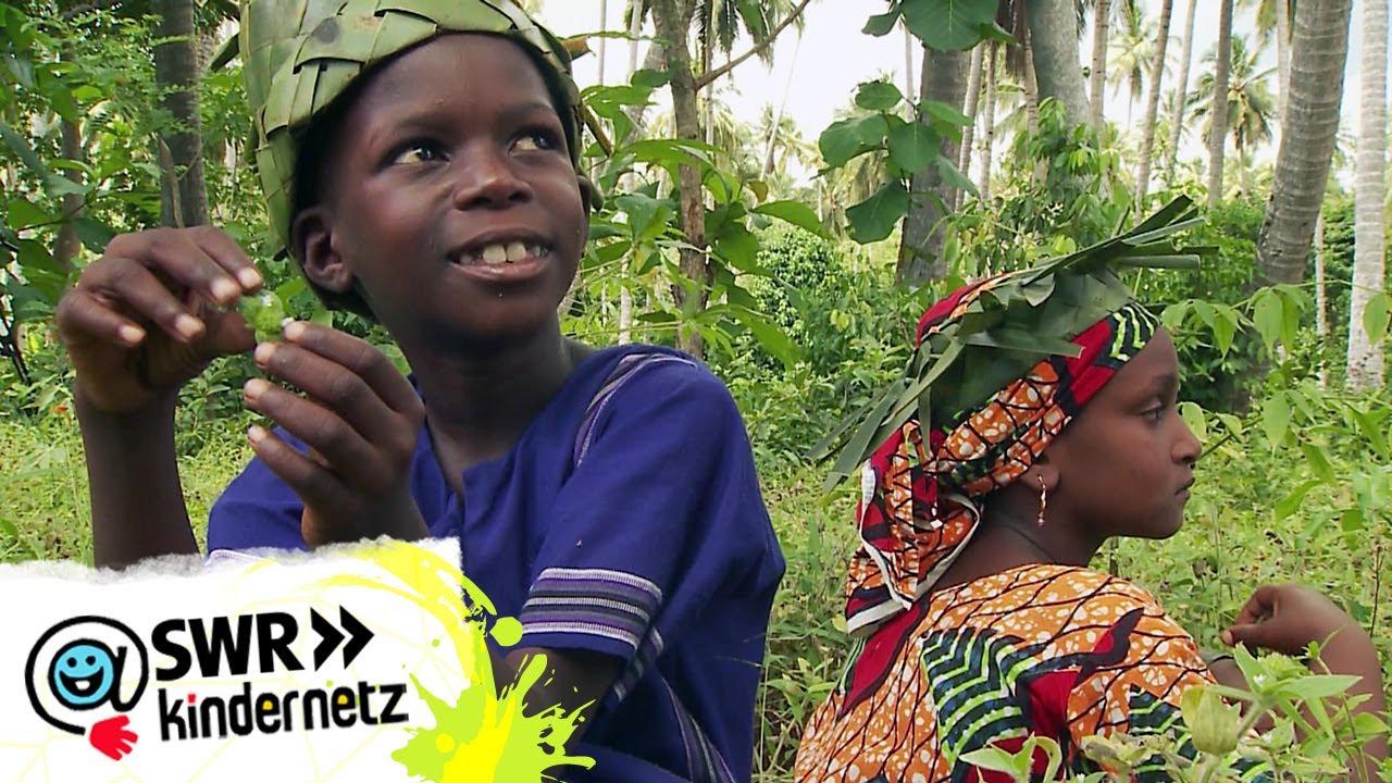 Pilau kochen auf der Gewürzfarm | Mein Bruder und ich in Sansibar | SWR Kindernetz