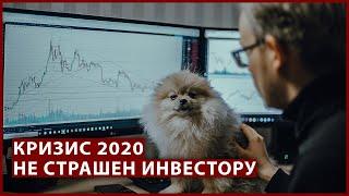Куда Вложить Деньги в Какие Акции. Кризис не Принесет Убыток. Инвестиции 2020.Почему я Покупаю Дивидендные Компании