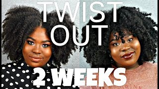 TWIST OUT MAINTENANCE FOR 2 WEEKS -- WEEKLY TO BIWEEKLY ROUTINE | Bubs Bee