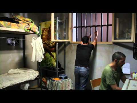 enfermés vivants,film documentaire sur la prison avec Guerrier -partie2/4