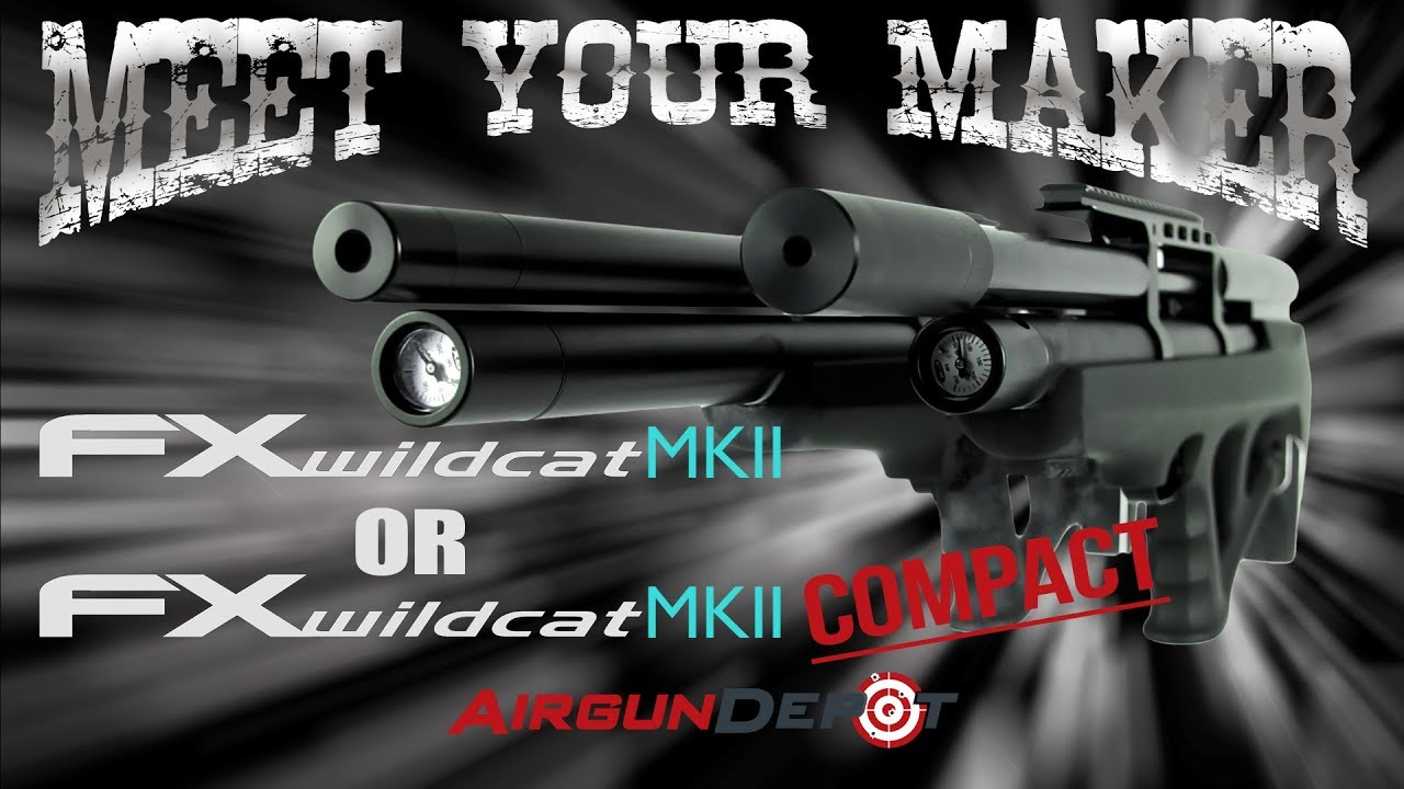 Meet Your Maker - FX Wildcat MKII Compact, Is It For You?