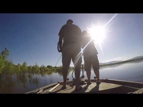 Bowfishing SoCal Outfitters