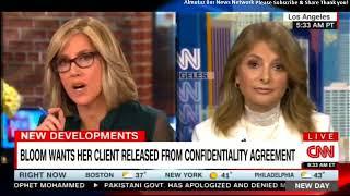 Lisa Bloom on Criticism over Representing Harvey Weinstein. #HarveyWeinstein #LisaBloom