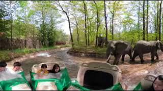 (360)아마존 익스프레스 에버랜드 놀이공원 4K 360 video