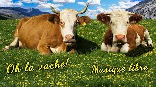Oh la vache ! Vosgiennes, en pleine nature. Libre de droits. Copyright Free Music.