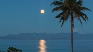 """Moon of Heaven"" Tropical Moonset at Sunrise (w Music) 1080p HD Nature Relaxation Video"
