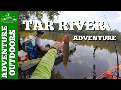Tar River Kayak Fishing In Greenville, NC