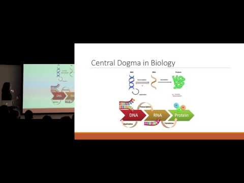 Finding What Fits: The Biochemistry of Drug Design