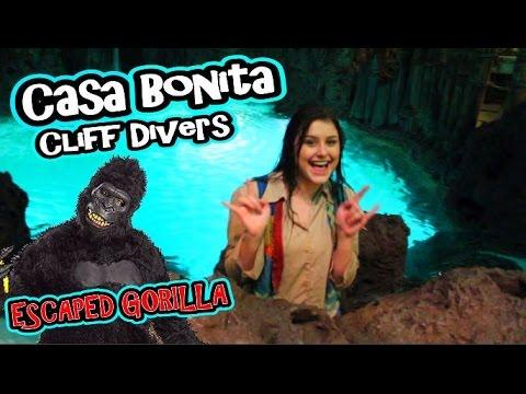 She Jumped into The Water! - Cliff Divers - Escaped Gorilla - Casa Bonita - Colorado