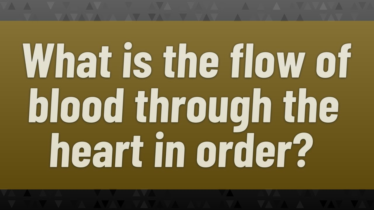 What is the flow of blood through the heart in order ...