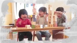 어린이집 유치원 초등 …