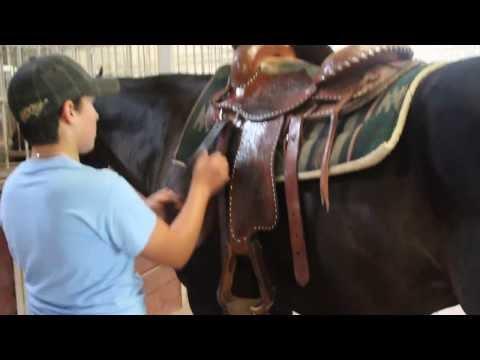 Michael & Horse III