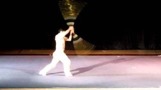 Beijing wushu(武術).  The karate kid, Zhenwei wang(王振威) performance.