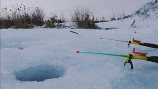 Зимняя рыбалка на плотву Рыбалка 2021 на диком озере Ловля плотвы