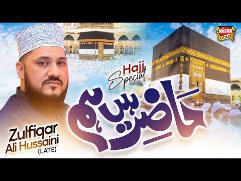 Zulfiqar Ali Hussaini - Labbaik Allah Humma Labaik - New Hajj Kalaam 2017
