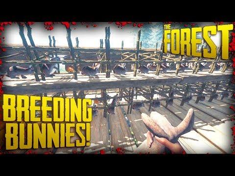 S2 EP9 - INSANE Rabbit Breeding + Rabbit Cage Rack Building (v0.69) | The Forest