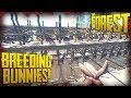 S2 EP9 - INSANE Rabbit Breeding + Rabbit Cage Rack Building (v0.69)   The Forest