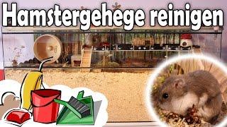 Hamstergehege reinigen/Käfig Säuberung