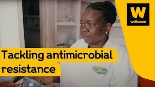 Promoting Pioneers – Tanzania thumbnail