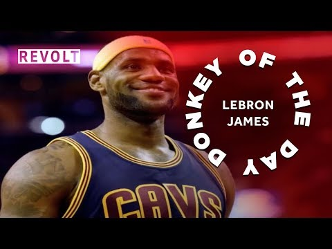 LeBron James   Donkey Of The Day