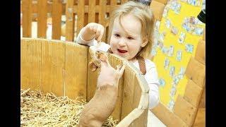 Развлечения для детей ЩЕНЯЧИЙ ПАТРУЛЬ и Ксюша идут в контактный зоопарк PAW patrol