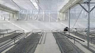 스마트 팜 비닐 하우스 공사