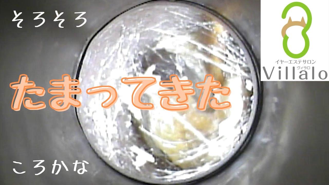 耳掃除動画vol.118「そろそろたまってきたころかな」