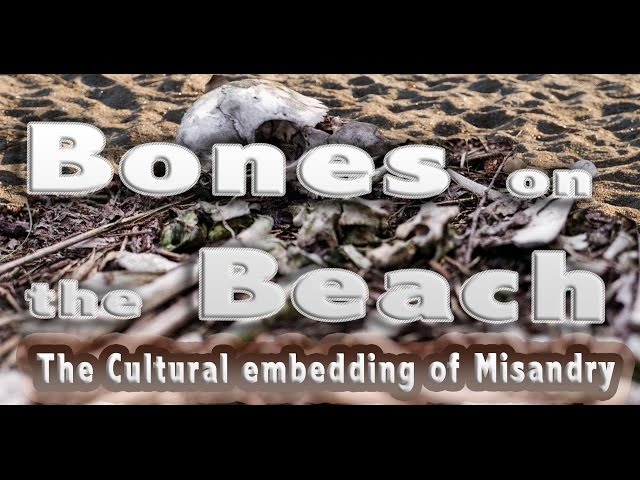 Bones on the Beach:  The Misandry Embedded in our Culture and in APA Division 51