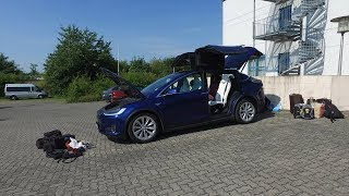 Space in Model X for 5 adults and a dog