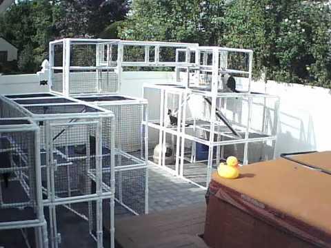 CatsOnDeck Custom Cat Enclosure