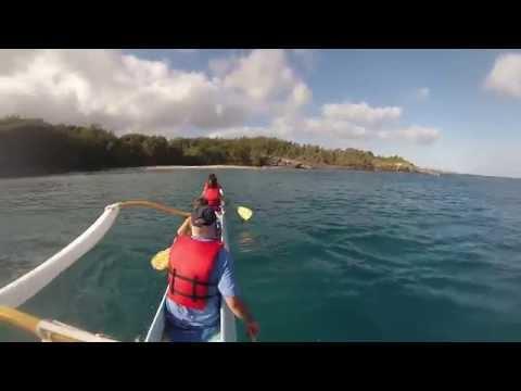 Honolua Bay Maui Information | Snorkeling & Surfing