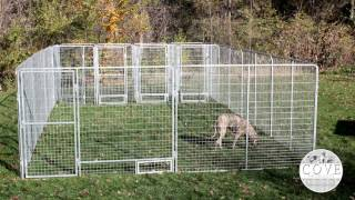 Dog Training pens and play zones for multiple dogs