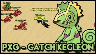 PxG - CATCH KECLEON!!
