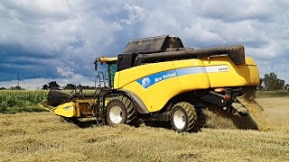 Żniwa 2016 - Pszenica - New Holland CX760