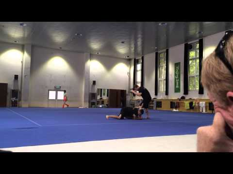 UCLA Martial Arts Demonstration for Beijing Sports University Wushu Academy