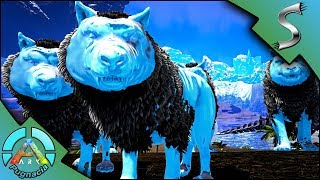GLACIAL DIREWOLF TAMING + BREEDING! GLACIAL BABY WOLVES & HUNTING PACK! - Modded ARK: PUGNACIA [E9]