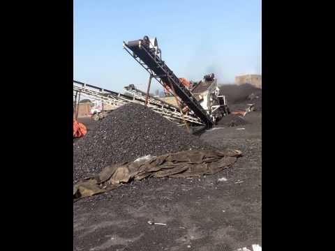 M.N Traders Coal