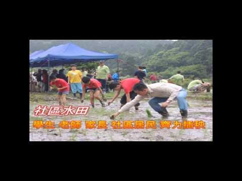 慶蓬萊米命名88週年米壽  湖田國小參與社區插秧活動