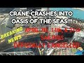 CRANE COLLAPSES INTO CRUISE SHIP | BREAKING NEWS |OASIS OF THE SEAS