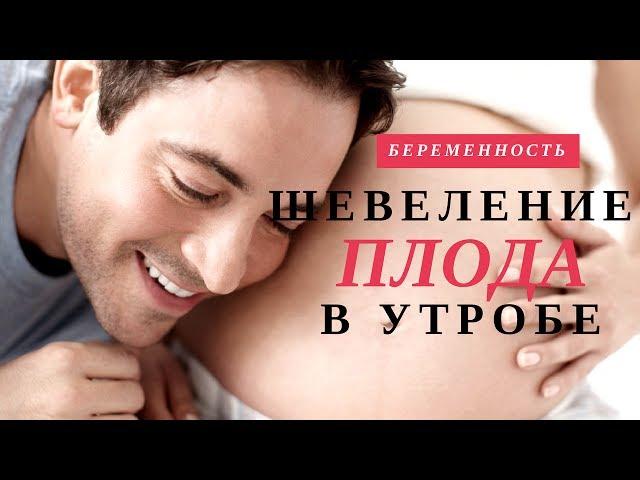 Шевеление Плода | Недели Беременности |  Беременность