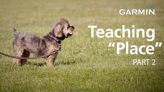 "e-Collar Training with Garmin: Teaching ""Place,"" Part 2"