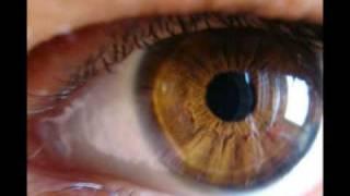 Kaczor Feri Szeretem a két szemedet