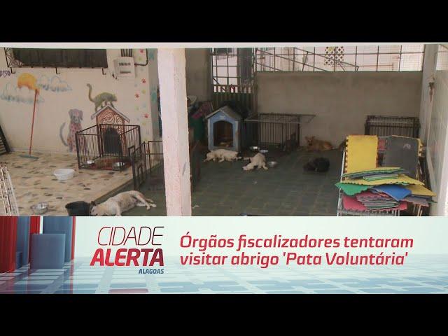 Órgãos fiscalizadores tentaram  visitar abrigo 'Pata Voluntária'
