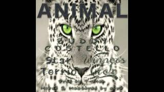 Download Animal - Buddy Costello Ft. Star Torrio & Winner's Circle (Prod. By T- Man) MP3 song and Music Video
